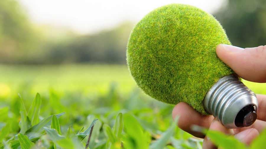 ¿Qué es el marketing verde y cómo aplicarlo?